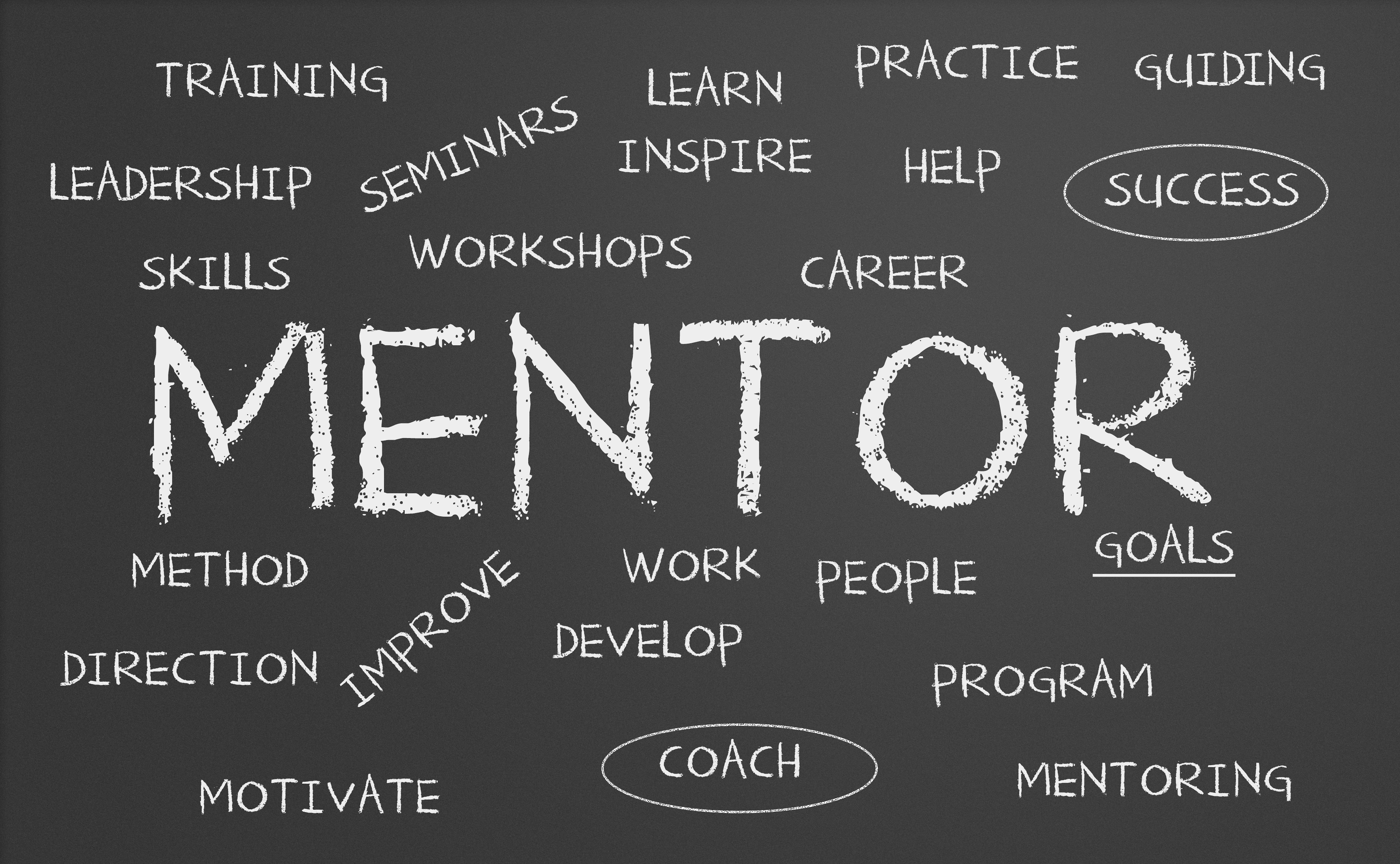Apply to be Matched with a Liberal Arts Alumni Mentor!