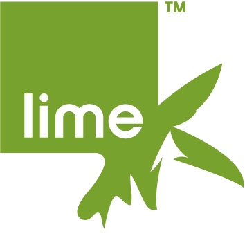 Lime Connect: Opportunities for Students & Alumni with Disabilities